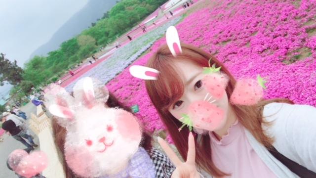 芝桜の丘*