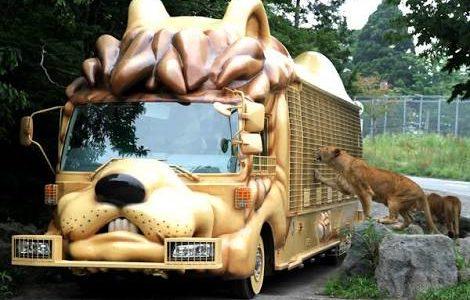 有名なCMの動物園♪( ´▽`)